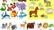 Коллекция забавных диких и домашних животных