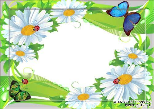 Фрукты, картинки ромашки красивые для детского сада для оформления