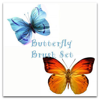 Butterfly Brush Set
