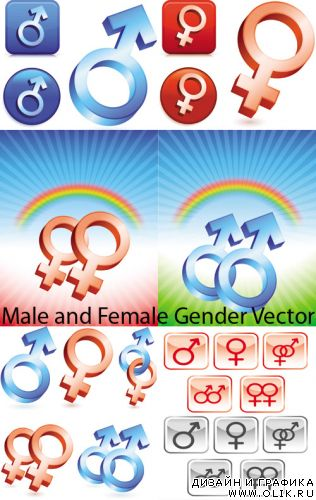 Male and Female Gender Vector