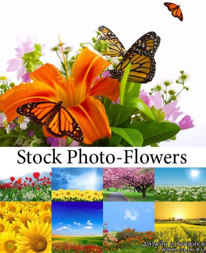 Stock Photo-SS Flowers Mix