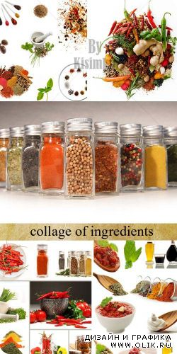 Stock Photo: Collage of ingredients