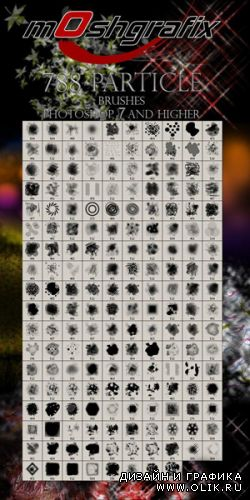 788 Particle brushes