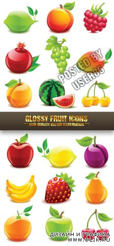 Stock Vector - Glossy Fruit Icons