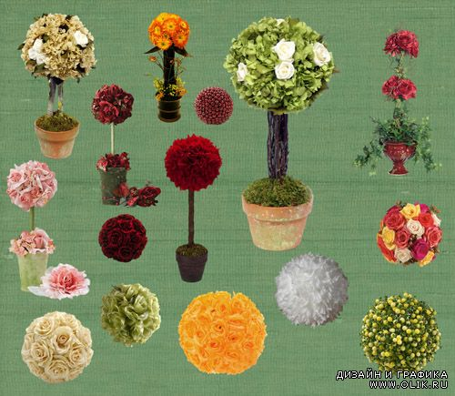PSD Clipart - Flower Topiary