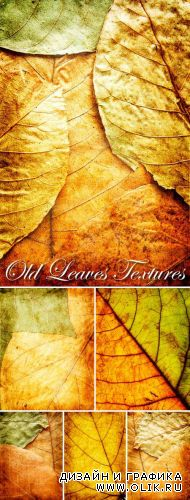 Old Leaves Textures Pack
