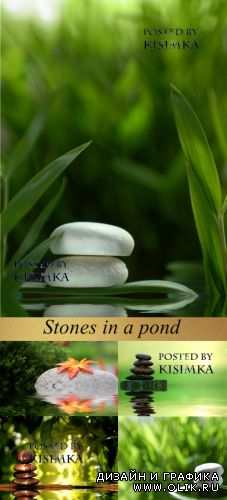 Stock Photo:Stones in a pond