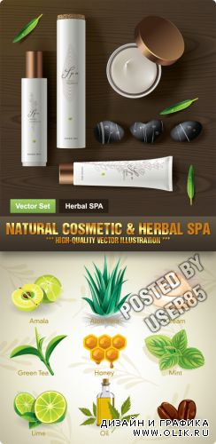 Stock Vector - Natural Cosmetic & Herbal Spa