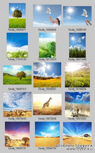 Stock Photo - Majestic Landscapes & Animals 2