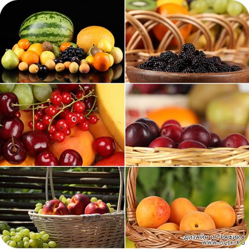 Stock Photos - Fruits and Berries 2