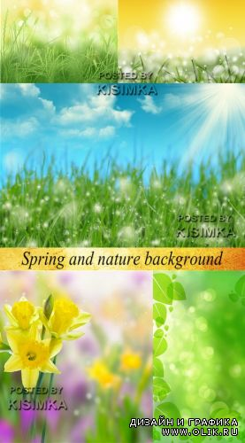 Stock Photo: Spring and nature background