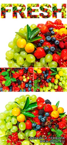 Stock Photo - Fruits and Berries