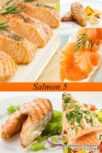 Stock Photo: Salmon 5