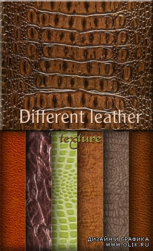 Different leather - texture