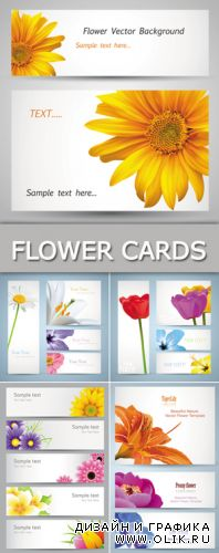 Flowers Cards & Banners Vector