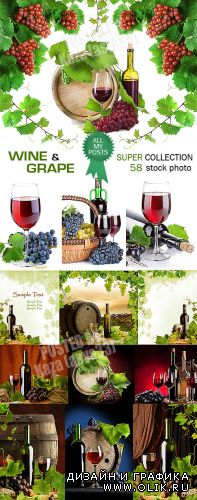 Wine & grape - Big collection