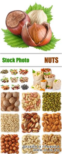Stock Photo - Nuts Collection