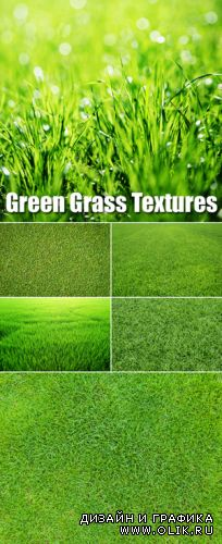 Stock Photo - Green Grass Backgrounds