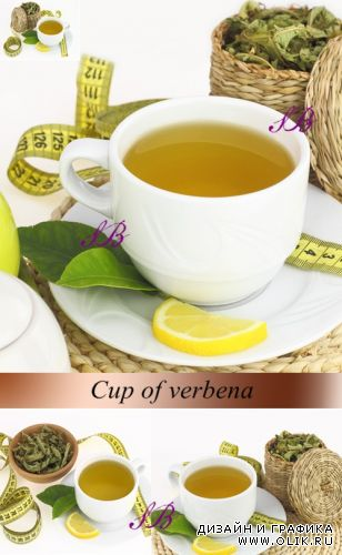 Stock Photo: Cup of verbena tea