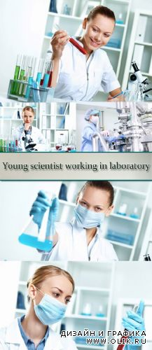 Stock Photo: Young scientist working in laboratory