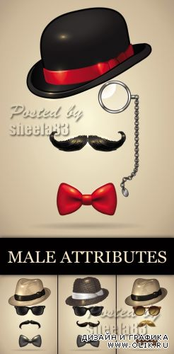Male Attributes Vector