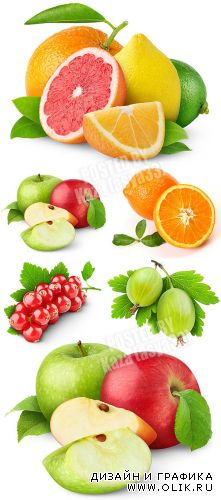 Fresh fruits 51