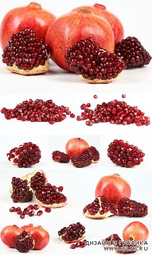 Photostock - Pomegranate