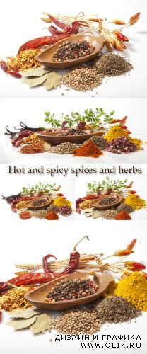 Stock Photo: Hot and spicy spices and herbs