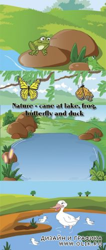 Stock: Nature - cane at lake, frog, butterfly and duck