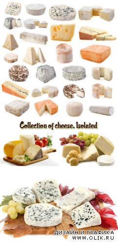Stock Photo: Collection of cheese. Isolated