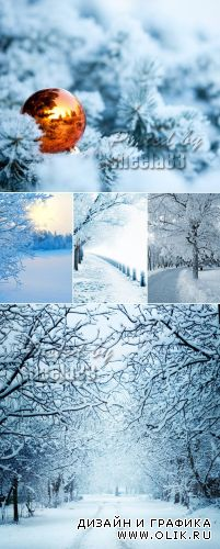 Stock Photo - Winter Landscapes 2