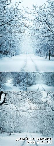 Stock Photo - Winter Landscapes 3