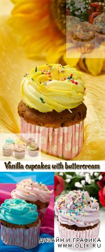 Stock Photo: Vanilla cupcakes with buttercream icing