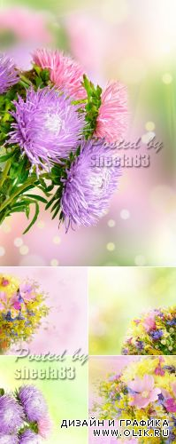Stock Photo - Spring Flowers Cards 3