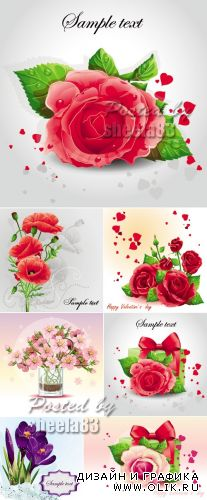 Beautiful Flowers Cards Vector