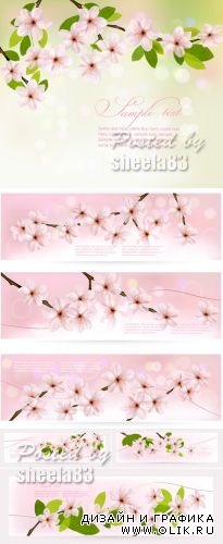Blossoming Tree Branches Vector