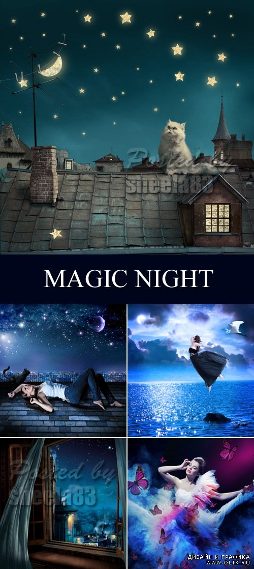 Stock Photo - Magic Night