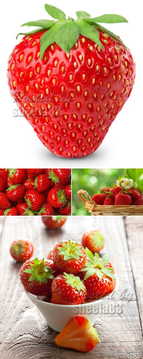 Stock Photo - Fresh Strawberries