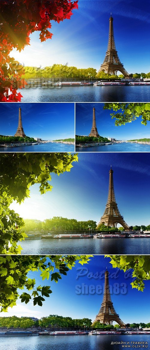 Stock Photo - Eiffel Tower