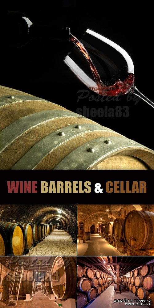 Stock Photo - Wine Barrels & Wine Cellar
