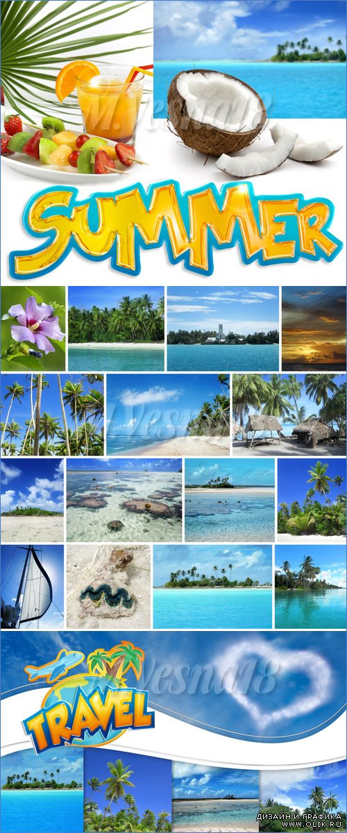 Тропическое лето в фонах и элементах /Tropical summer in the backgrounds and elements - stock photo