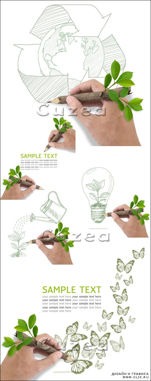 Мужские руки, дерево и текст / Male hand drawing tree in a light bulb - stock photo