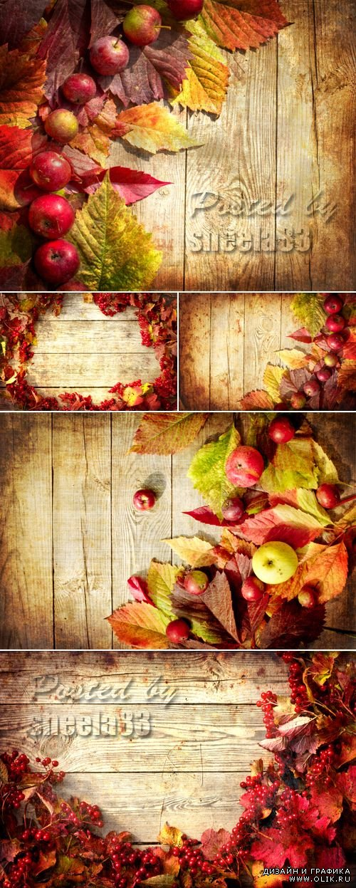Stock Photo - Autumn Wooden Backgrounds