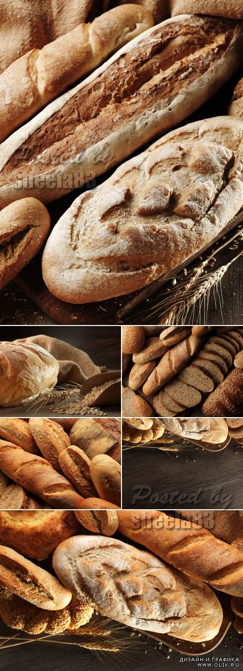 Stock Photo - Bread & Bakery