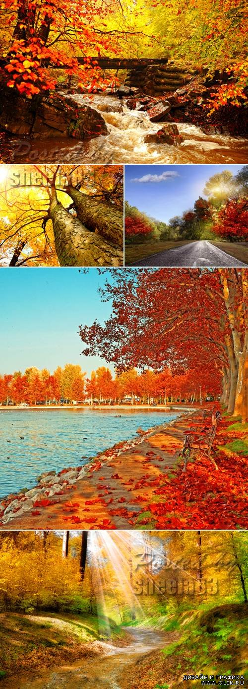 Stock Photo - Autumn Nature Backgrounds
