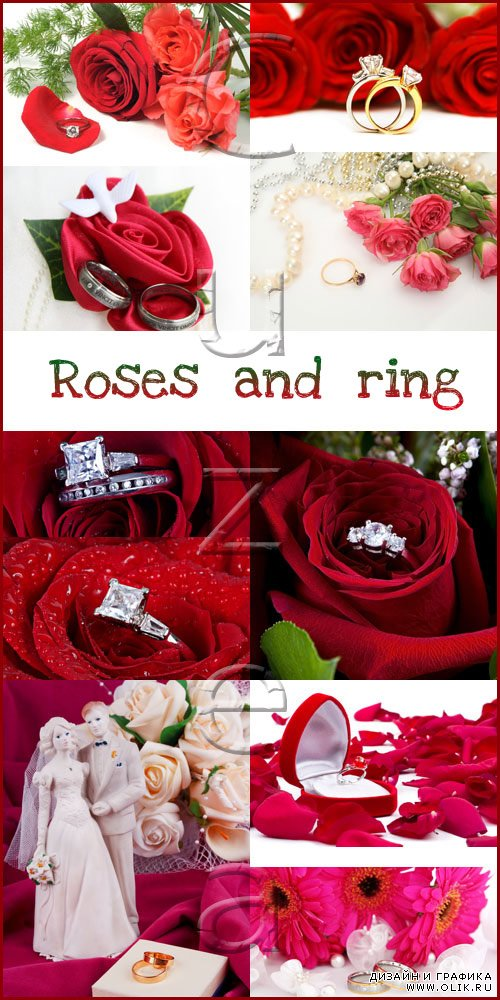 Red roses and wedding rings - stock photo