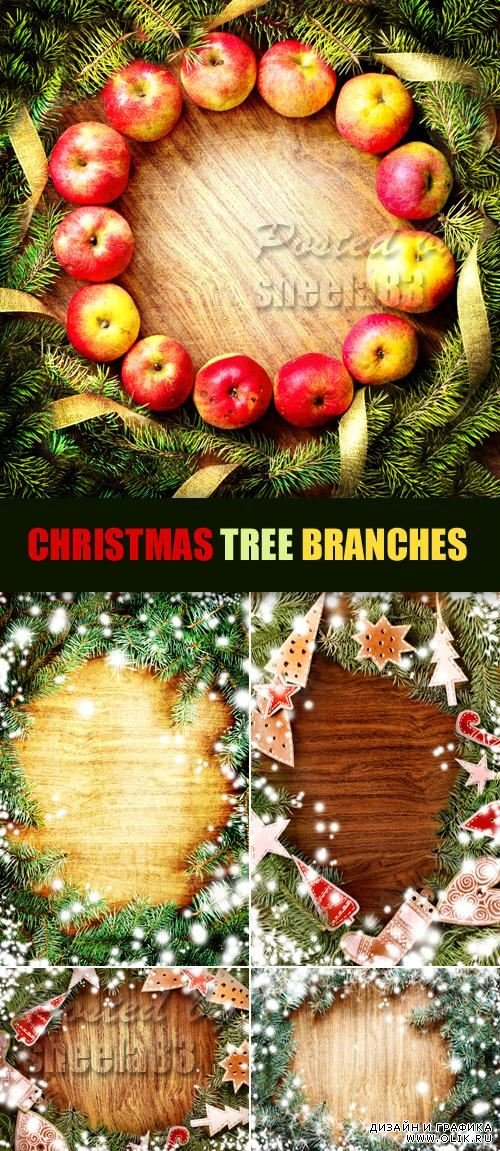 Stock Photo - Christmas Tree Branches on Wood
