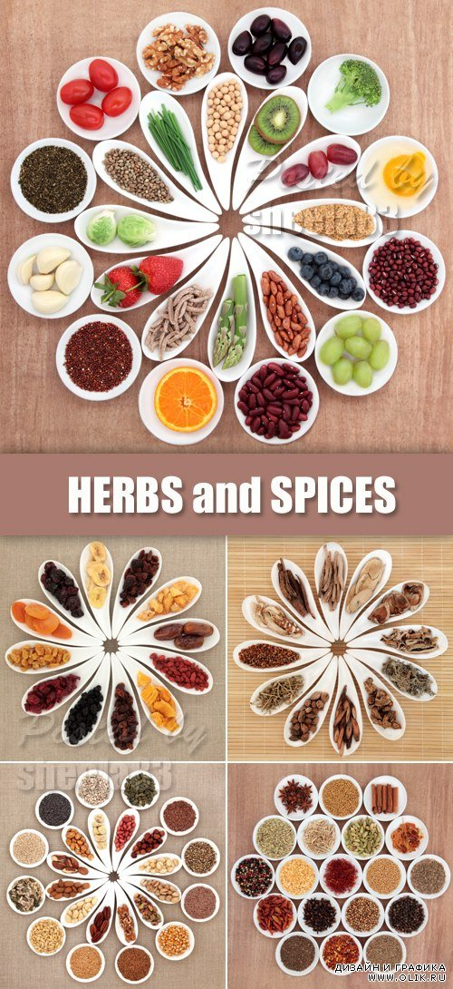 Stock Photo - Herbs, Vegetables & Spices