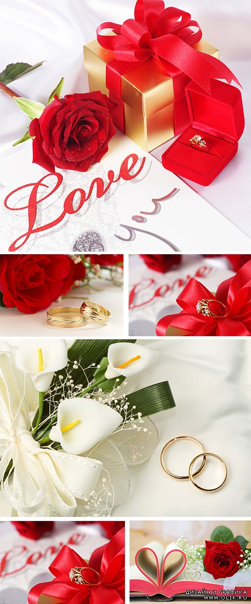 Stock Photo: Wedding rings with red roses