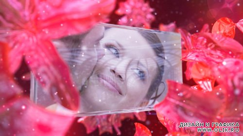 Wedding Fairy - Projects for After Effects (VideoHive)